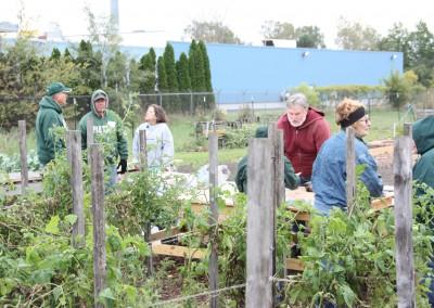 DTE Energy Garden October Harvest 5