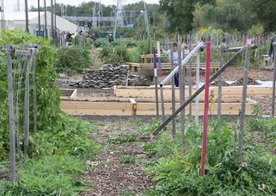 DTE Energy Garden October Harvest 13