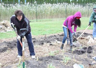 DTE Energy Garden October Harvest 11
