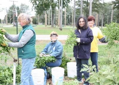 DTE Energy Garden October Harvest 9