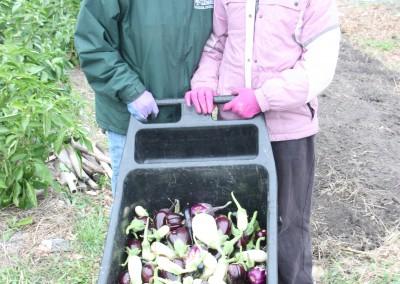 DTE Energy Garden October Harvest 18