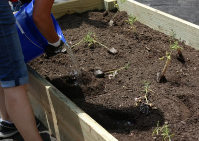 Working Homes Working Families Transforms Vacant Lot to Community Park 17