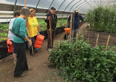 Urban farm yields bountiful time for ATTH volunteers 4