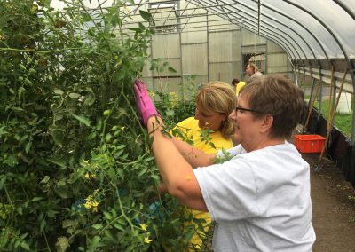Urban farm yields bountiful time for ATTH volunteers 6