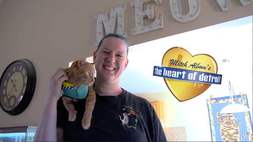 Cat Rescue a Model of Love