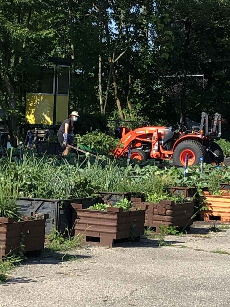 Group Gardening at Big Glen Brings 'A Time to Help' Together Again 13