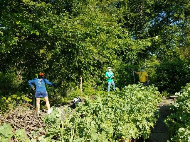 Group Gardening at Big Glen Brings 'A Time to Help' Together Again 4
