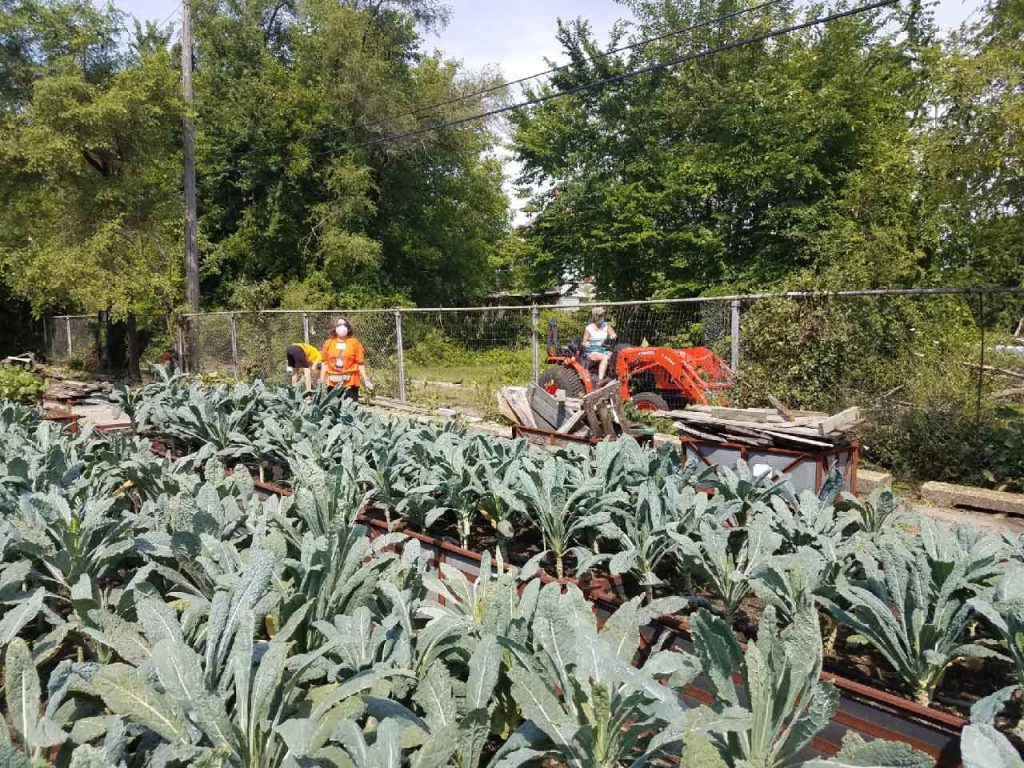 Group Gardening at Big Glen Brings 'A Time to Help' Together Again 5